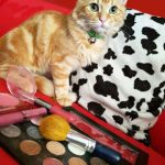 Animal friendly make up brands